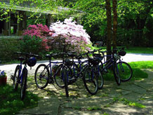 A group of bicycles parked on front patio of the inn and azalea bushes in full bloom in the background.